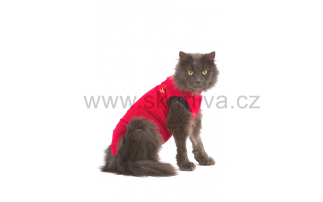 Medical Pet Shirts Cat XS